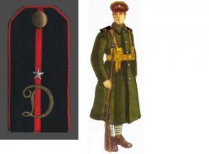 Погон прапорщика и рядовой Добровольческой дивизии