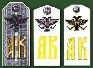 Погоны 25-го Екатеринбургского полка горных стрелков